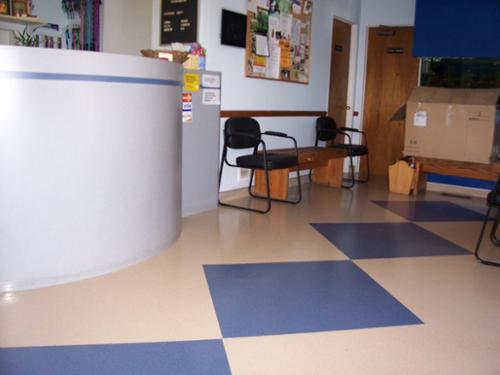 Heterogeneous vinyl with welded seams provide this veterinary hospital with lasting performance and low maintenance costs.