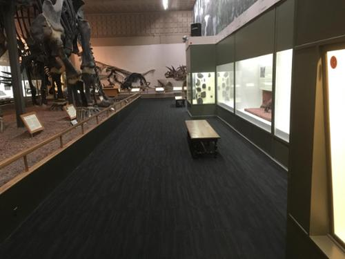 Sullivan & Son Carpet Inc. is very proud to have been a part of the project in The Great Hall of Yale Peabody Museum of Natural History in New Haven, CT. This photo highlights Shaw's Modular tile, Space.